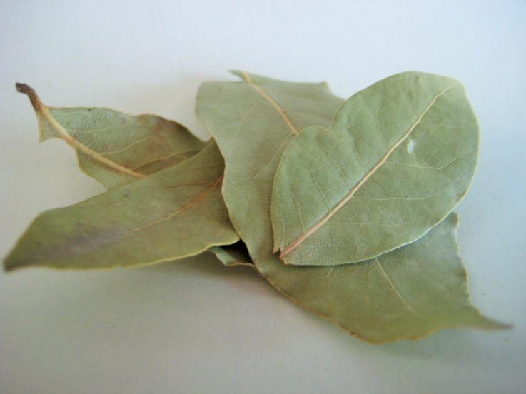 Rye Spice Bay Leaves