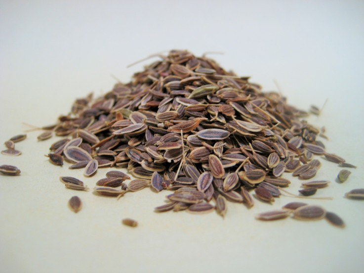 Rye Spice Dill Seed